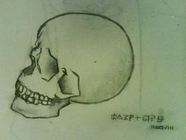 Skull by Rok3OVERLORD