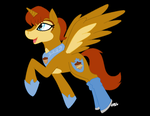 Our New Princess Alicorn Sally! by XShadowOfFireX