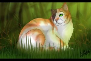 Brightheart of ThunderClan by xxMoonwish