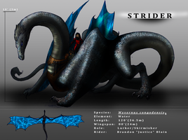 Dragons - Strider by EjLowell