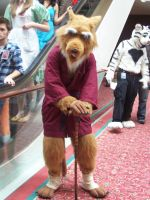 Master Splinter by Rubber-Band-Of-Doom
