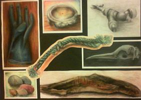 My School Higher (A Level) Art Folio by supersonicartdrawer