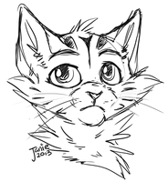Spottedstar Bust Sketch by Catatouillee