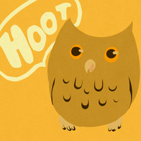 HOOT by Avibroso