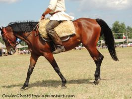Hungarian Festival Stock 106 by CinderGhostStock