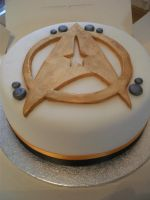 Star Trek Cake by gertygetsgangster