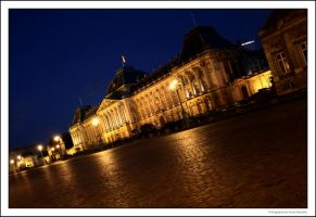 The Royal Palace of Brussels by OnayGencturk