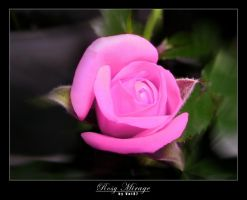 Rosy Mirage by vnt87