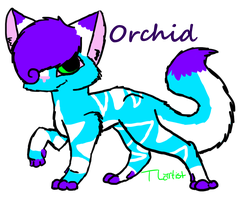 Orchid by TLartist