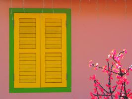 Yellow Window with Fake Flower by vinsky2002
