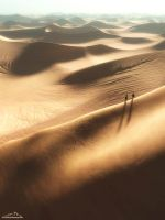 The Sahara Journey by 3DLandscapeArtist
