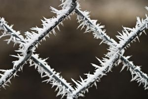 Chain Link with Frost by SonjaPhotography