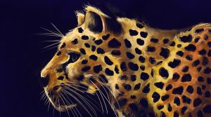 Cheetah by TinyTrapdoor
