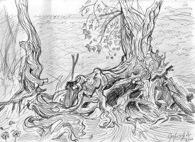 the roots by tlumult