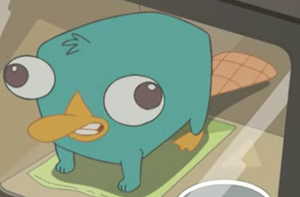 Perry bebe by phineasandferbfan100