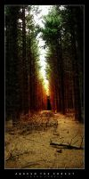 Awoken The Forest by iamgoatman
