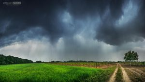 May Day-The first storm cell by NorbertKocsis
