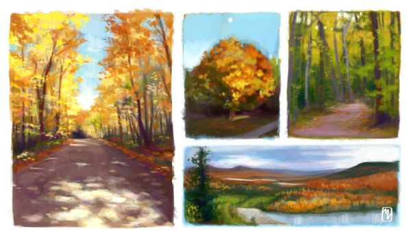 Landscape Studies by yaile