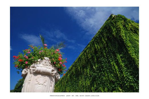 Postcards from Salzburg - V by DimensionSeven