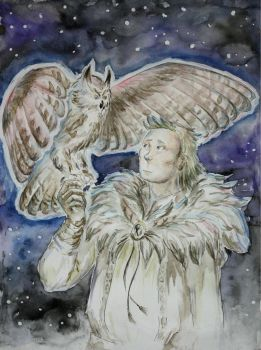 Onni and his Owl by Helia7