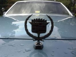 cadillac fleetwood brougham exterior 5 by angusyoung3