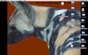 African Wild Dog Desktop by Rukia1000