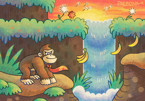 Donkey Kong Country by Paleona