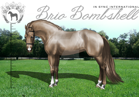 ISI Brio Bombshell by Decorum100