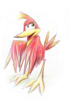 Kazooie by SirKittenpaws