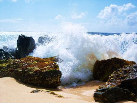 North Shore, Hawaii by daveypeterson