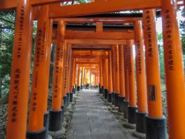 Torii 6 by thecomingwinter