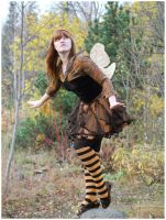 Autumn Fairy by Eirian-stock