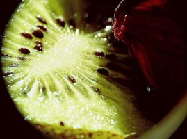 Sweet fruits III by lotos15