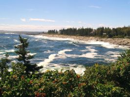 The Surf below Pemaquid by davincipoppalag