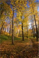 Autumn view... _57_ by my-shots