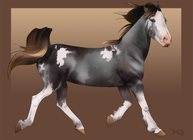 a horse by ghostiel