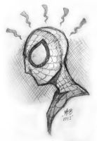 Spidey Sketch by Karbacca