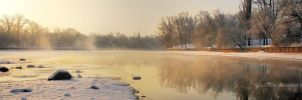 Winter fog by iuli72an