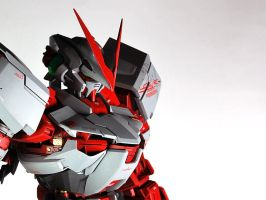 PG Red Astray by STR1KU
