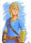 Zelda Breath of the Wild - Link by JCMX