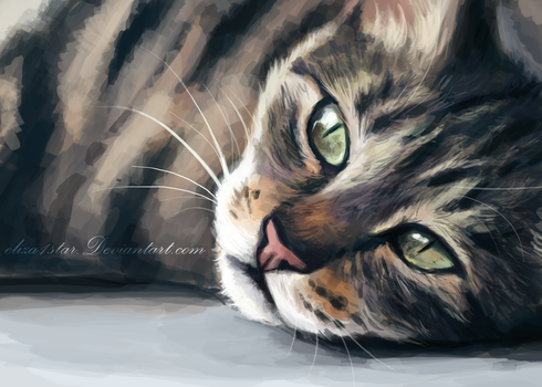 Cat Painting Exercise by eliza1star
