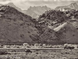 Owens Valley141130-43-Edit by MartinGollery