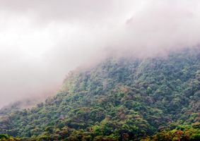 The Mountain and Mist Stock by CharlesWPhotos
