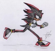 Shadow the Hedgehog by BlueNeedle-Inu