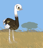 My Little Ostrich by Max-F1
