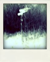 Poladroid Roads 05 by DpressedSoul