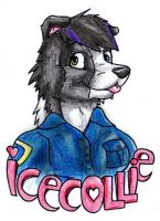 Icecollie badge by danwolf15