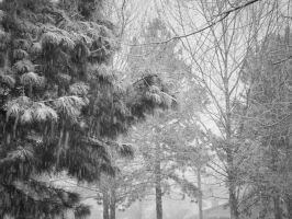 snow day by TheUnknown860