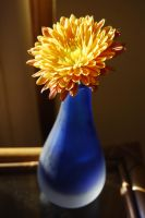 Blue Vase by mr-macd
