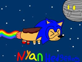Nyan hedgehog [Remake] by nintenfan96